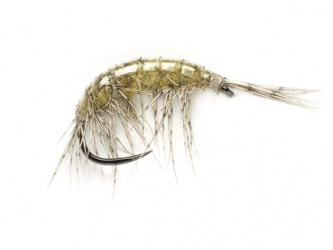 FM OE Freshwater Shrimp Barbless #14