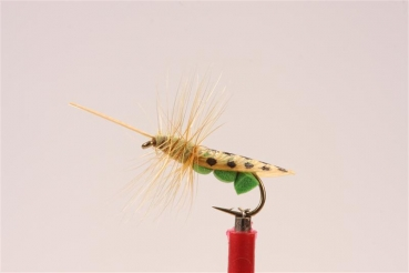JD Green Sedge