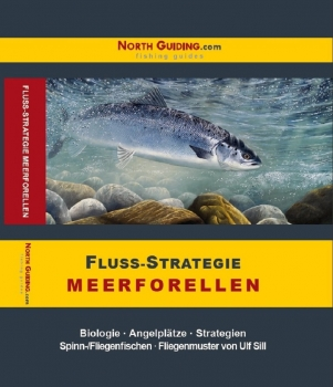 Fluss-Strategie - Meerforelle